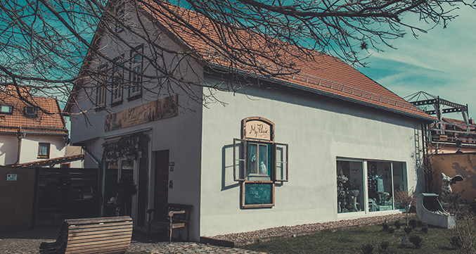 Besonderes erleben in Arnstadt